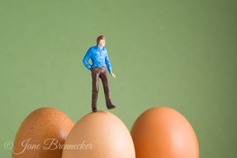 walking on eggshells 2